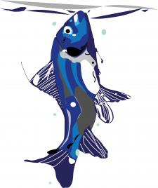 Magnetic fish