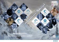 дизайн сайта питомника кошек