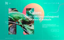 Design web page about nature