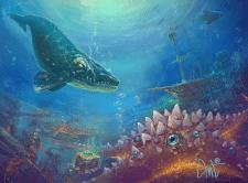 whale and starfish