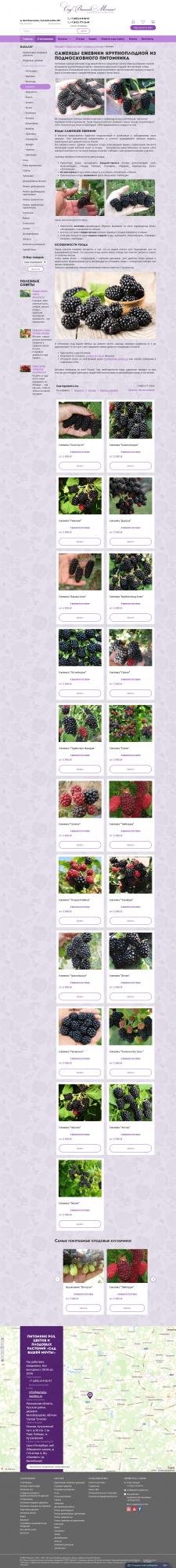 Описания плодовых кустарников - Ежевика.