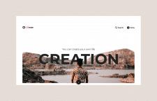 Дизайн Creation