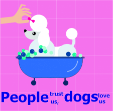 Постер Салон собак