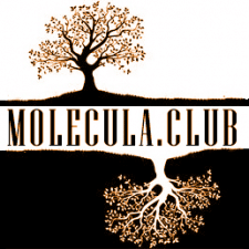 Лого группы в Facebook - Molecula.club