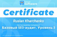"""Сертификат """"Базовый SEO-аудит. Уровень 3"""""""
