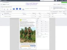 Поднятие публикации в Facebook за 14 долл