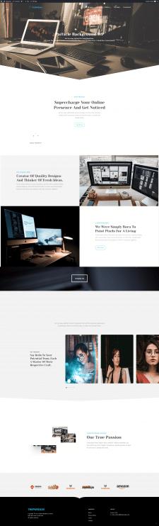 Wordpress + JavaScipt (Media Agency)