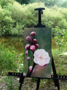 Один раз в год сады цветут_картина