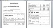 Перевод бухгалтерской отчетности