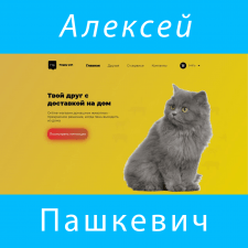 Интернет-магазин животных