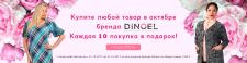 Баннер для Dinoel