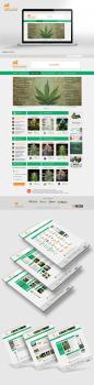 Дизайн сайта для Wiki-seeds (Энциклопедия семян)