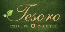 Логотип Tesoro