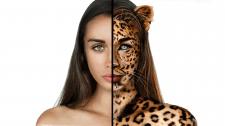 Коллаж Девушка-леопарт