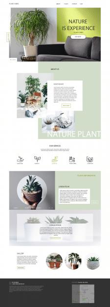 дизайн студии растений )