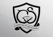 Castitas Et Splendor