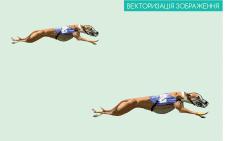 Векторизація зображення.Промальовка