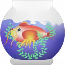 рыбка-петух