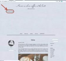 Скриншот бага