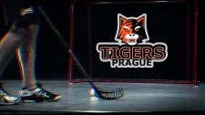 Логотип для команды Prague Tigers