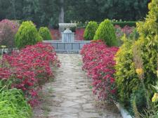 Сад в Крыму
