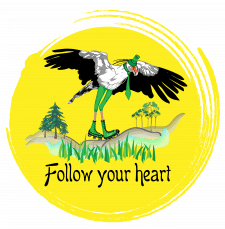 Следуй за своим сердцем
