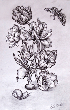 Иллюстрация цветов