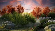 Сказочная полянка