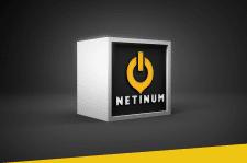 "Логотип ""Netinum"""
