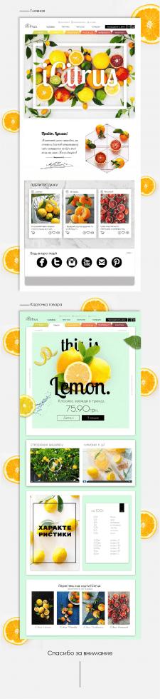 Дизайн интернет-магазина iCitrus