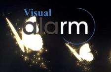 Visual alarm