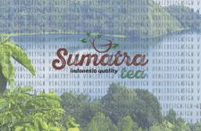 Логотип для компании по реализации чая