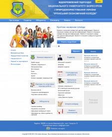 Дизайн сайта коледжа