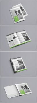 Annual Report for Animal-id.info
