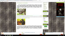 Полезный сайт о животных