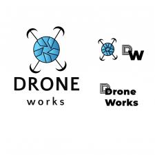 Логотип для фирмы DroneWorks