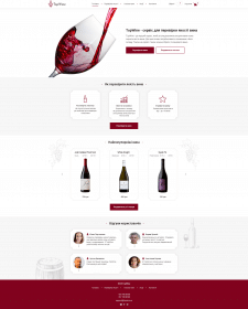 Дизайн сайта для проверки качества вина