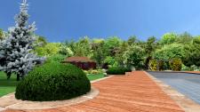 Английский сад. Розарий
