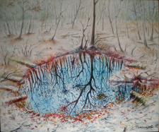 Отражение ранней зимы / Reflection of early winter