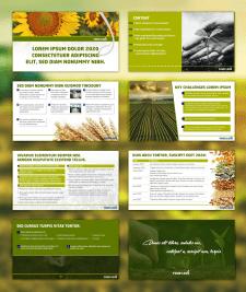 Дизайн презентации на аграрную тематику
