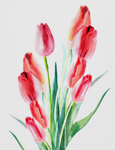 Живопись тюльпаны