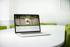 Сайт продажи искусственных ёлок