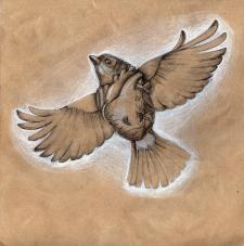 Мартовская птица