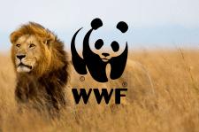 WWF Ukraine