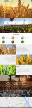 Дизайн сайта для аграрной компании