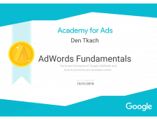 Expert in Google AdWords