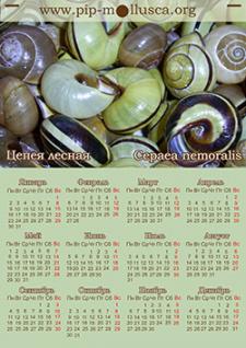 Тематические календари на 2017 г.