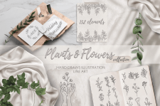 Plants & Flowers collection