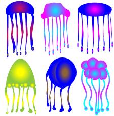 загадочный подводный мир