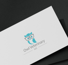 Owl Veterinary
